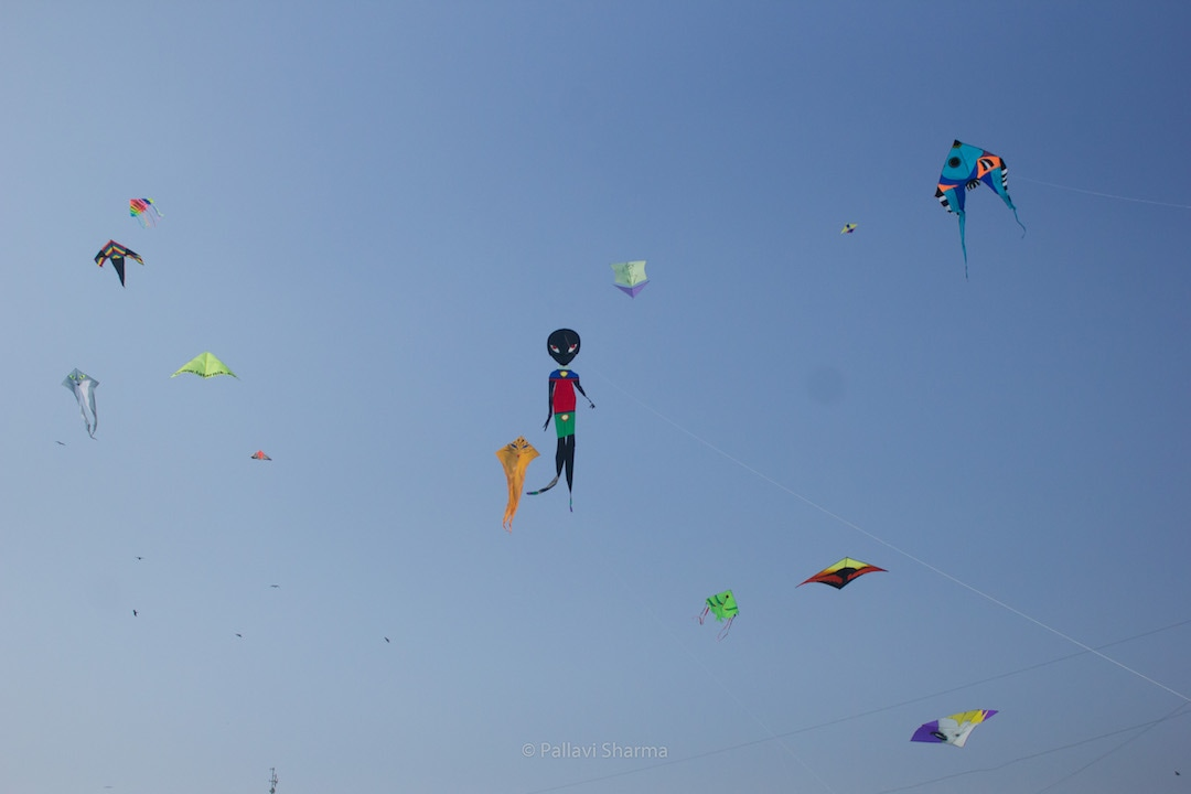 Variety of kites from different nationalities at International Kite Festival