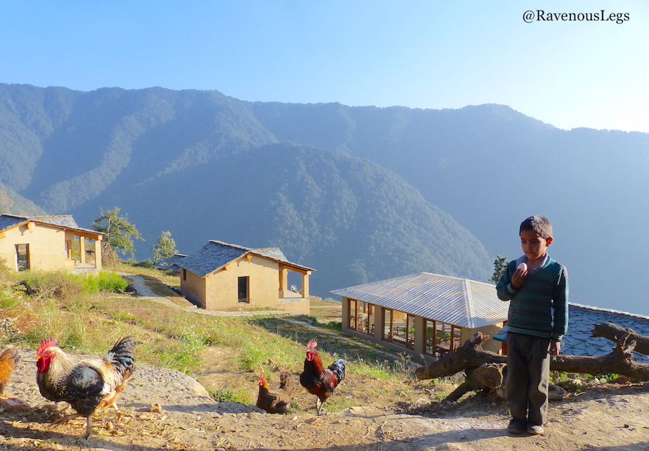Chick Inn poultry at The Goat Village, Nag tibba