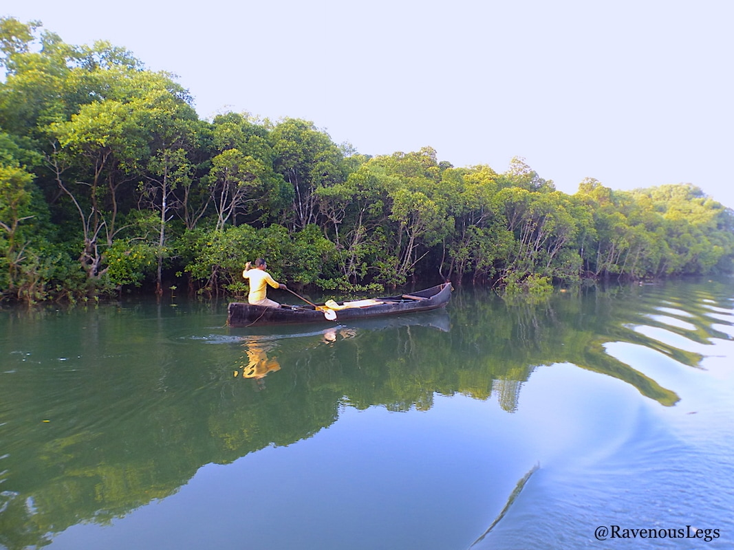 local fisherman riding canoe on Mandovi river at Chorao Island