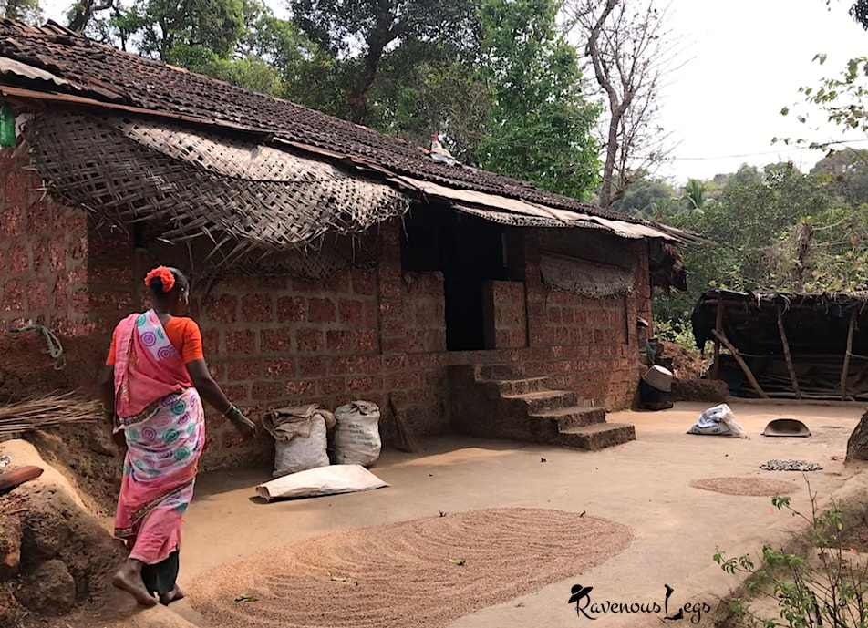 Traditional Malvani house in Parule village, Maharashtra